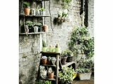 Ideas for greening your garden walls